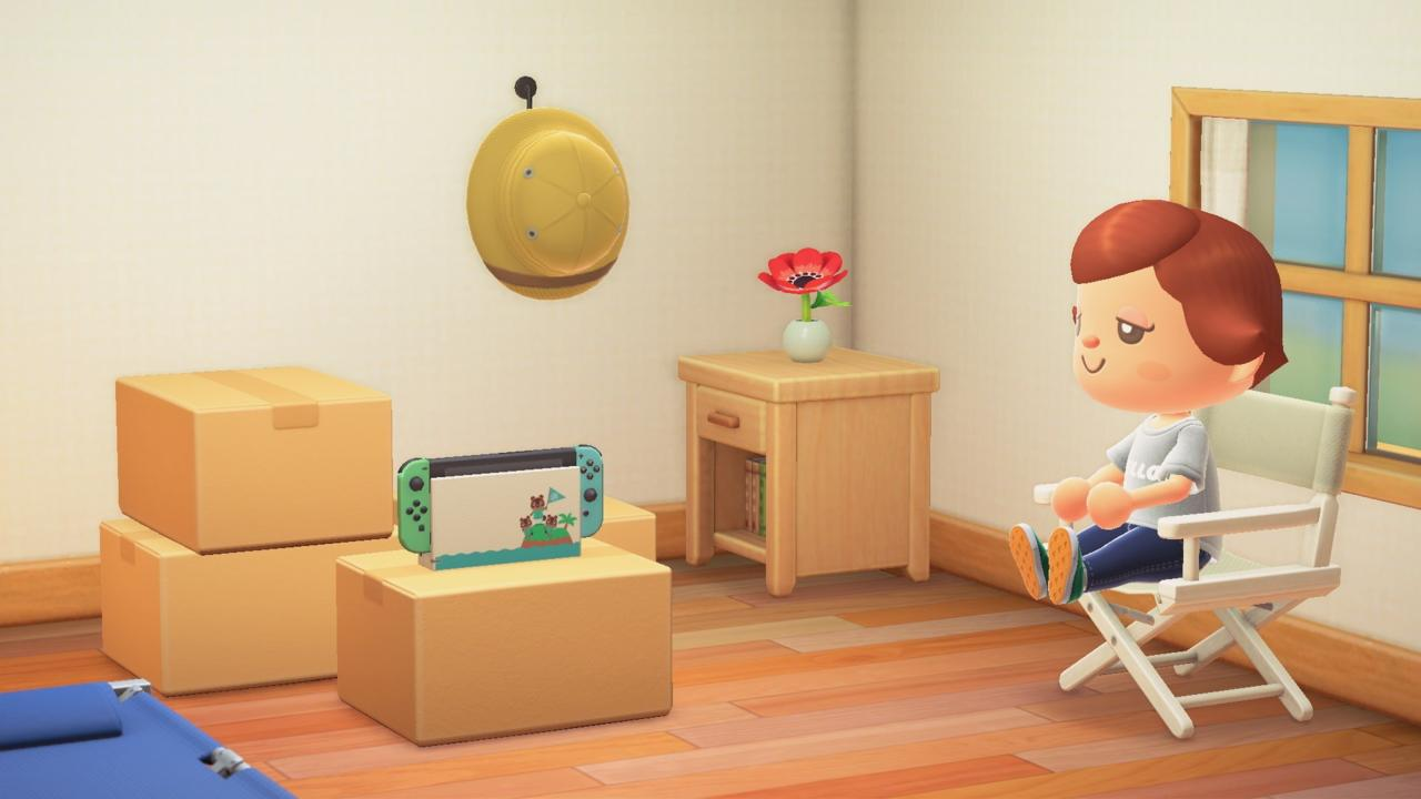 Animal Crossing: New Horizons special edition in-game Switch