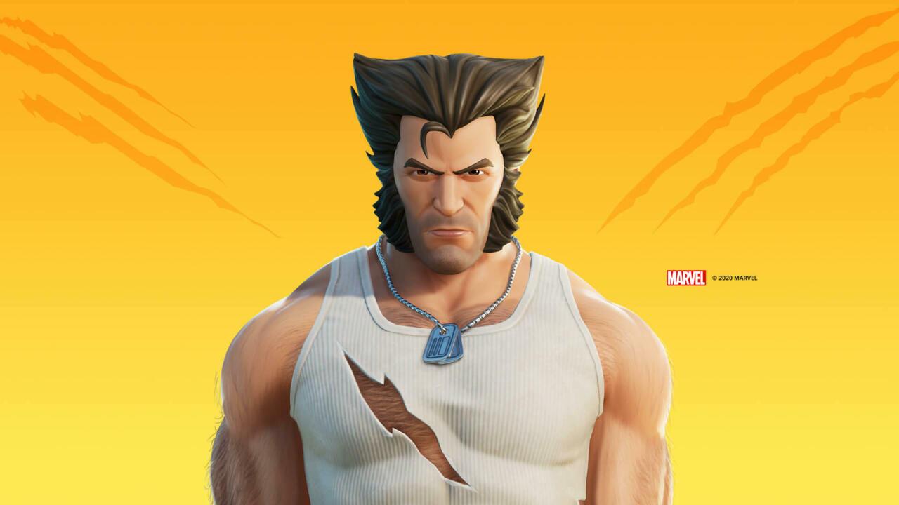 Wolverine Logan skin