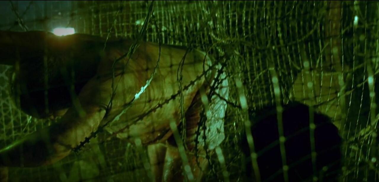 18. The Razor Wire Maze