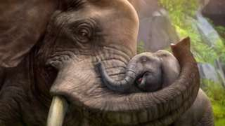 Zoo Tycoon - Taking a Nostalgic Franchise to Next-Gen Consoles