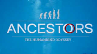 Ancestors: The Humankind Odyssey Gameplay Footage   The Game Awards 2018
