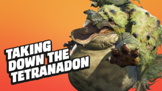 How to Take Down the Tetranadon in Monster Hunter Rise