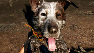 Boomer Is A Good Boy - Far Cry 5 Dog Gameplay