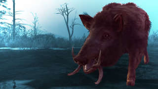 Hunting A Killer Boar In Assassin's Creed Odyssey