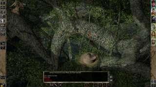 Baldur's Gate II: Enhanced Edition - Launch Trailer