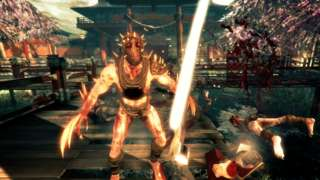 Shadow Warrior - Wingtastic Survival Mode