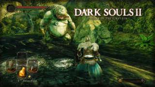 Dark Souls II: Scholar of the First Sin - Forest of Fallen Giants Gameplay