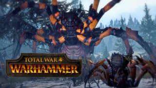 What is Total War: WARHAMMER?