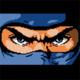 Avatar image for Ninja-Hippo